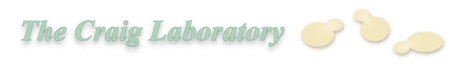 Craig Lab header illustration